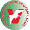 Tooradin-Dalmore-Football-Club-logo